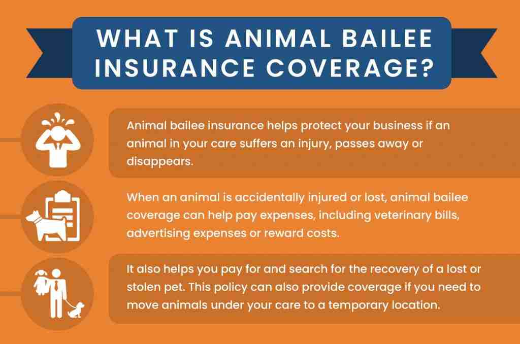 Animal Bailee Coverage